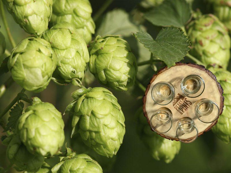 Craft-Beer-Crosscut-2-19-17-A-Flight-of-Centennial