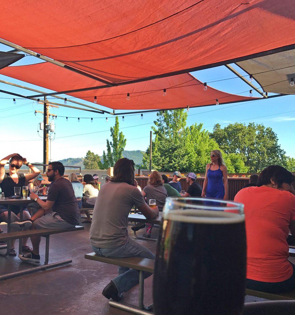 Northwest-Porter-Companion-Everybodys-Brewing-Pucker-Huddle