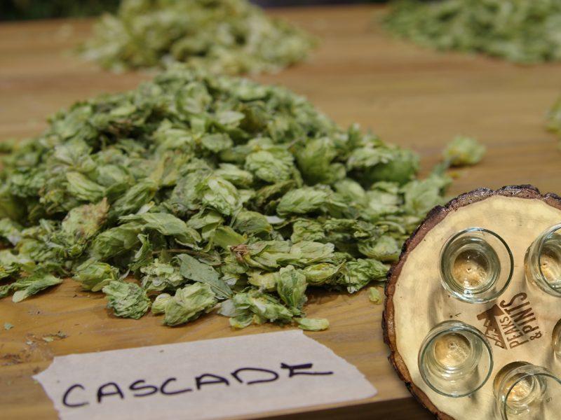 Craft-Beer-Crosscut-6-8-17-A-Flight-of-Super-Hopped