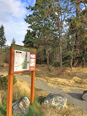 Green-Tacoma-Day