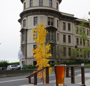 fall-beers-at-Pacific-Brewing-and-Malting-Tacoma