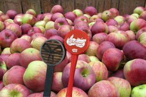 Cider-Tap-Takeover-at-Three-Magnets-Brewing-In-Olympia