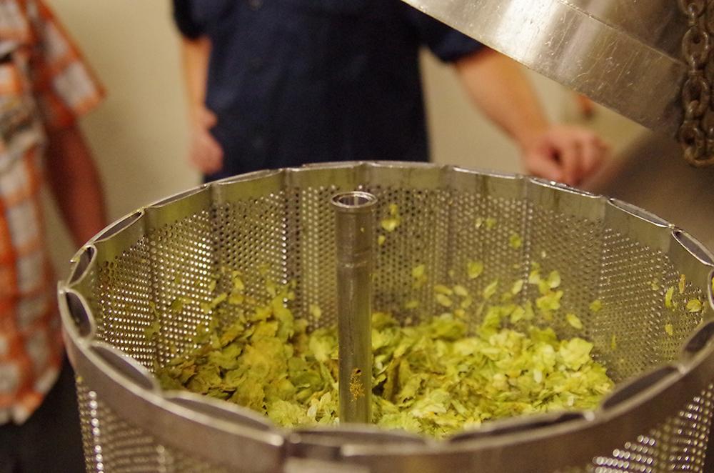 sierra-nevada-brewing-hop-torpedo