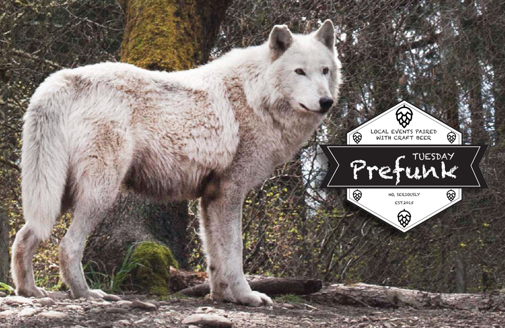 craft-beer-before-wolf-haven-book-chat-tacoma