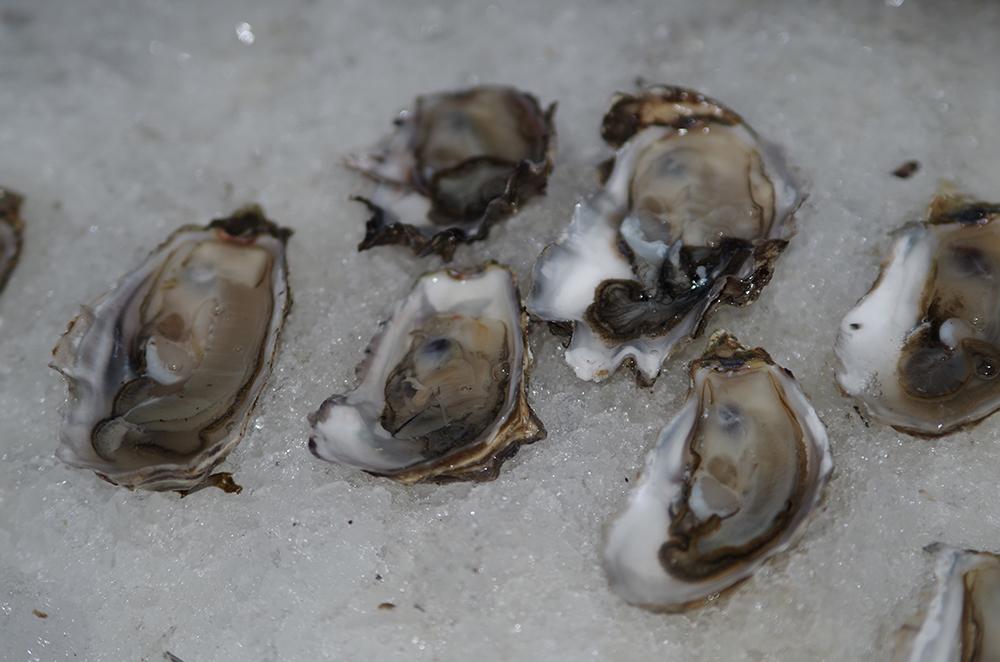 Pike-Chocofest-Hamma-Hamma-oysters