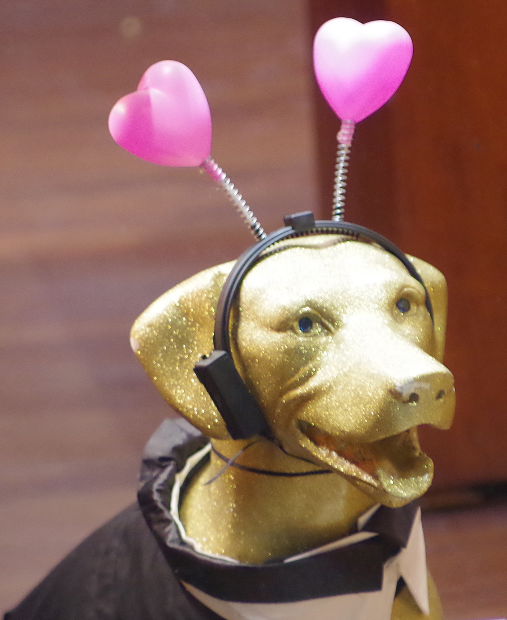 Pike-Chocofest-dog-alien